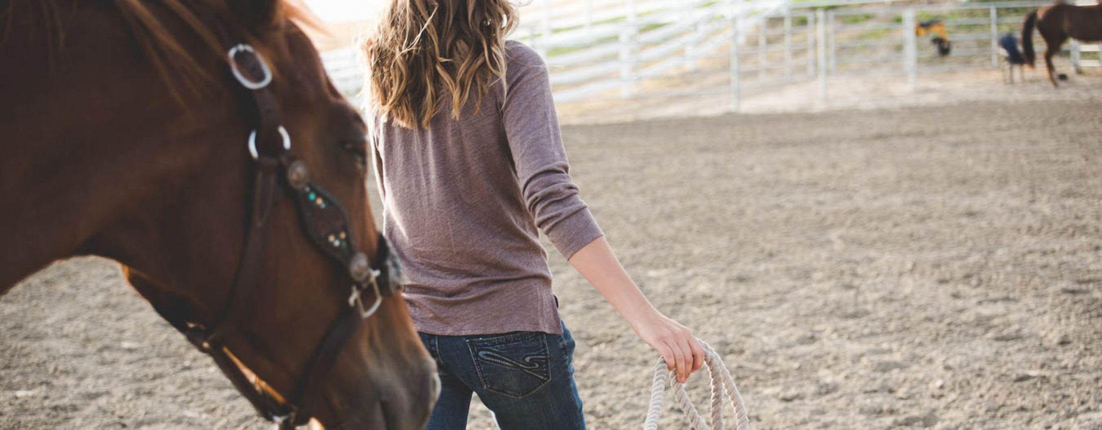 Honor in Horses